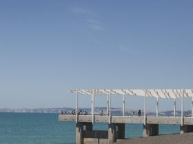 Napier Viewing Platform