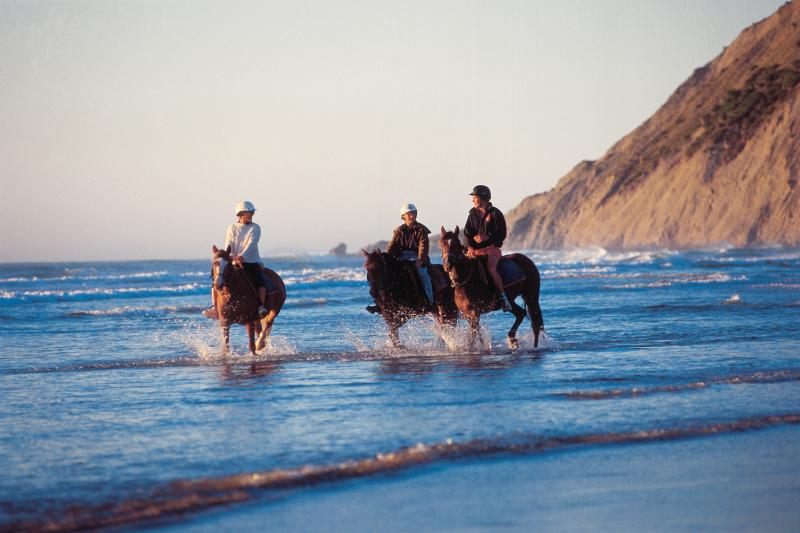 Horse riding on Porangahau Beach