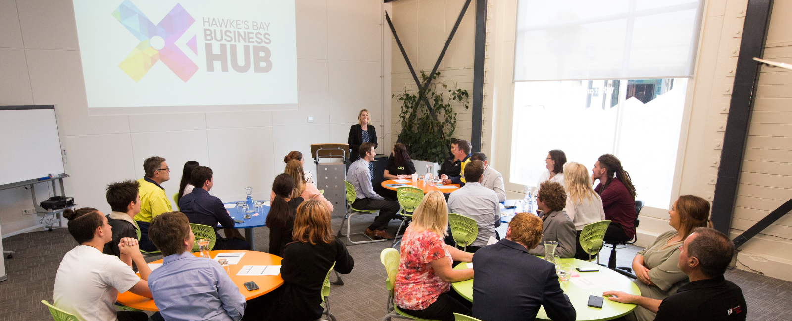 Hawke's Bay Business Hub