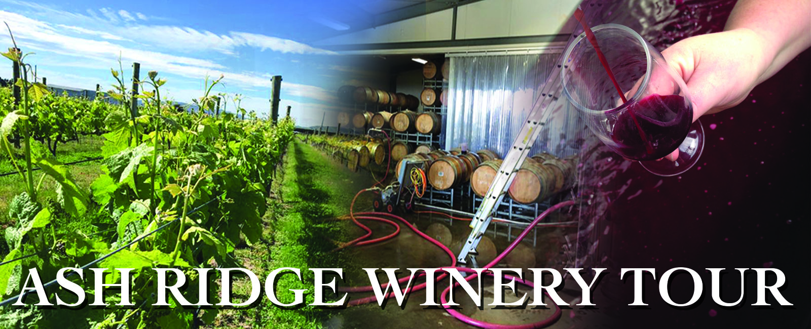 Ash Ridge Winery Tours